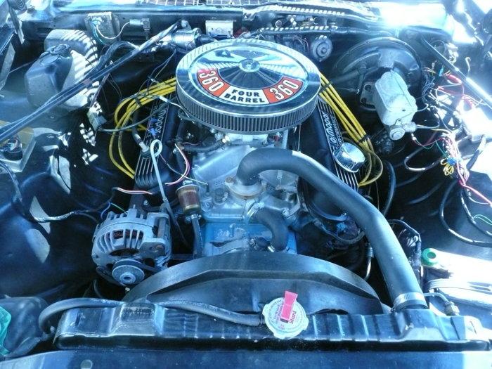 1977 Plymouth Volare Roadrunner-3.JPG