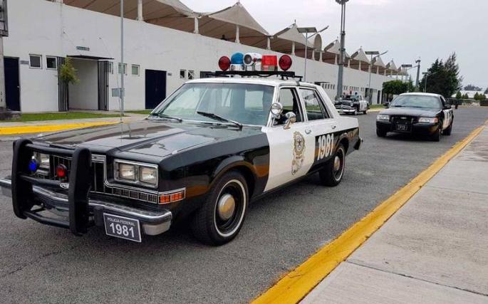 mexdartpolicia.jpg
